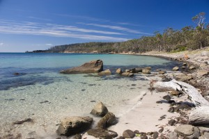 Maria Island Beach Freycinet Experience Walk in Tasmania Australia