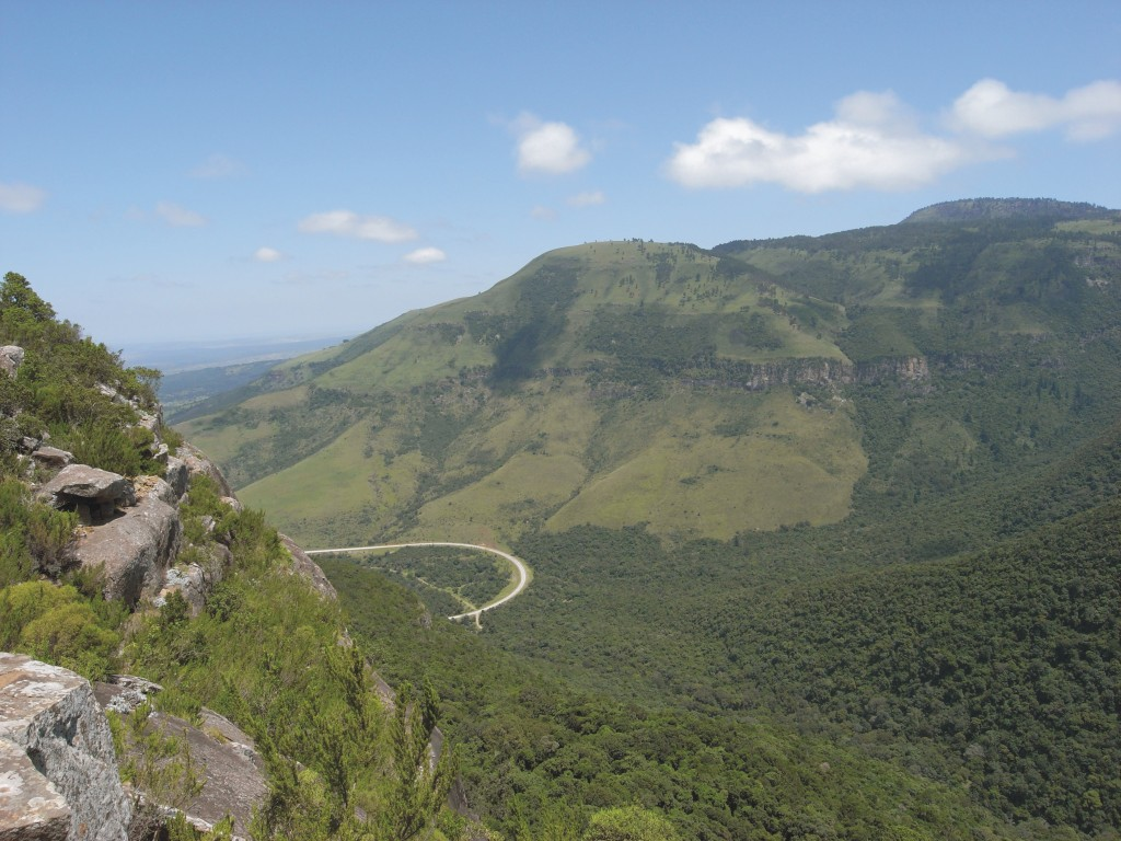 Amathole mountains auckland forest South Africa
