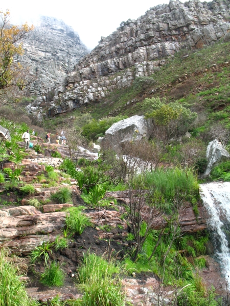 Hoerikwaggo Trail Table Mountain South Africa