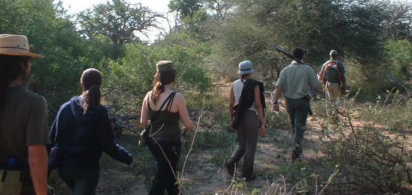 Kruger Wilderness Trails South Africa