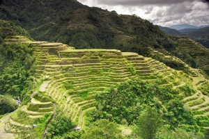 Trails in the Banaue Rice Terraces Philippines