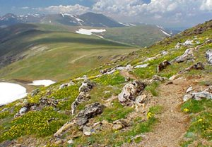 Mount Ida hiking trail Rocky Mountain National Park